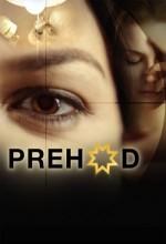 Prehod (2008) afişi