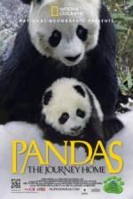 Pandalar: Eve Yolculuk (2014) afişi