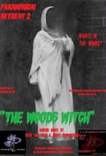 Paranormal Retreat 2-The Woods Witch  (2016) afişi