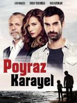 Poyraz Karayel (2014) afişi