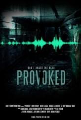 Provoked (2013) afişi