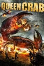 Queen Crab (2015) afişi