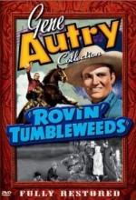 Rovin' Tumbleweeds (1939) afişi