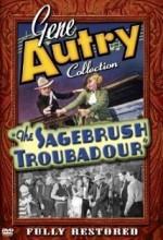 Sagebrush Troubadour (ı) (1935) afişi