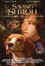 Saving Shiloh (2006) afişi