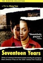 Seventeen Years (1999) afişi