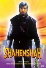 Shahenshah (1988) afişi