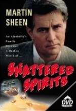 Shattered Spirits (1986) afişi