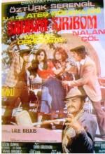 Şiribim Şiribom (1974) afişi