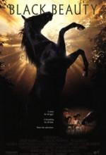 Siyah İnci (1994) afişi
