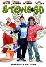 Stone & Ed (2008) afişi
