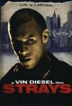 Strays (1997) afişi