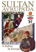 Sultan Avrupa'da (2009) afişi