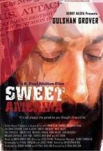 Sweet Amerika (2008) afişi