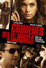 Şehvet Suçları (2011) afişi