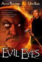 Şeytan Gözler (2004) afişi