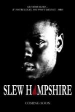 Slew Hampshire (2013) afişi