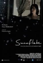 Snowflake (2014) afişi