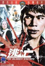 Tao Wang (1975) afişi