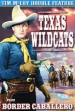 Texas Wildcats (1939) afişi