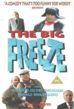 The Big Freeze (1993) afişi