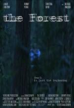 The Forest (ı)
