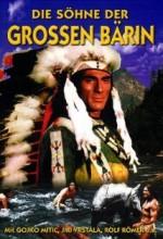 The Sons Of Great Bear (1966) afişi