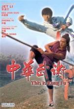 This ıs Kung Fu