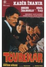 Tövbekar (1977) afişi