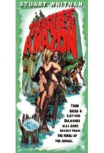 The Treasure Of The Amazon (1985) afişi