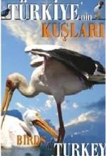 Türkiye'nin Kuşları  afişi