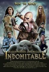 The Dragonphoenix Chronicles: Indomitable (2013) afişi
