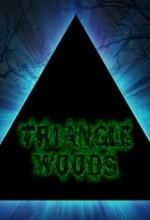 Triangle Woods (2017) afişi
