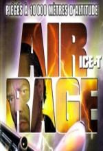 Uçakta İntikam (2001) afişi