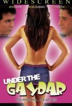 Under The Gaydar (2009) afişi