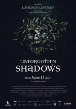 Unforgotten Shadows (2013) afişi