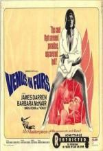 Venus in Furs (1995) afişi