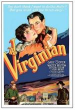 Virginia'lı (1929) afişi
