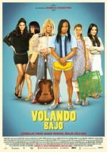 Volando Bajo (2014) afişi