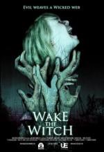 Wake The Witch (ı) (2010) afişi