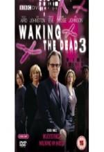 Waking The Dead (2003) afişi
