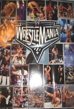 Wrestlemania 22 (2006) afişi