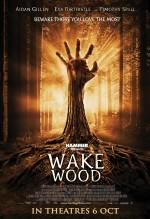 Wake Wood (2011) afişi