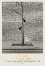 Wild Canaries (2014) afişi