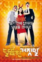 Yalandan Aşk (2008) afişi