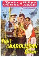 Yiğit Anadolu'dan Çıkar (1969) afişi