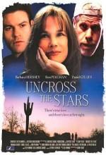 Yıldızlara Ulaşmak (2008) afişi
