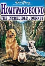 Yuvaya Dönüş : İnanılmaz Seyahat (1993) afişi