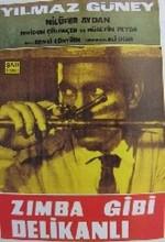 Zımba Gibi Delikanlı (1964) afişi