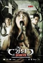 Zorla Giren 2010 (ı) (2010) afişi